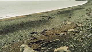 Tanybwlch beach