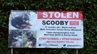 Stolen sign appealing for information
