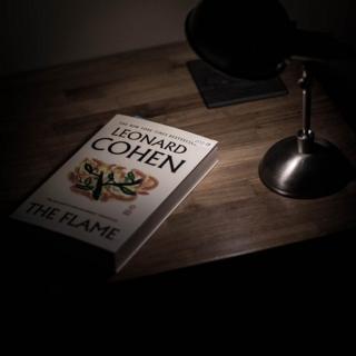 in_pictures Leonard Cohen book