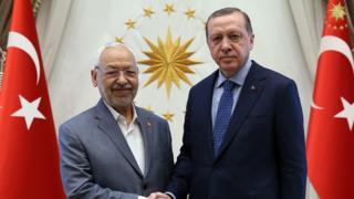 لقاء الرئيس التركي طيب رجب أردوغان برئيس البرلمان التونسي وزعيم حركة النهضة راشد الغنوشي