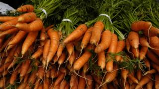 A pile of recently harvested bunched carrots