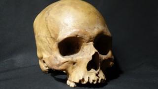 கிளர்ச்சியில் கொல்லப்பட்ட 32 வயது இந்திய சிப்பாயின் மண்டையோடு