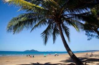 Picture of Mission Beach in Queensland, Australia - ONE TIME USE ONLY
