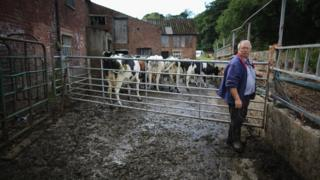 Farmer in Cheshire