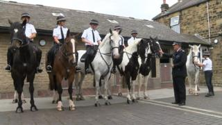 South Yorkshire Police's mounted section