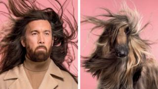 A man with long hair and a Afghan dog with long hair blows in the wind against a bright pink background