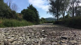 The dry river