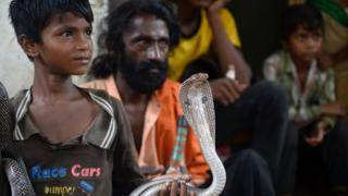 The son of an Indian snake charmer holds a cobra snake in Kapari village, around 40km southwest of Allahabad in Uttar Pradesh state, 25 July 2017