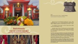 Project Balichinesia