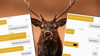 Deer and dating app messages