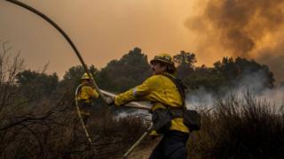 Bomberos combatiendo el fuego en el bosque
