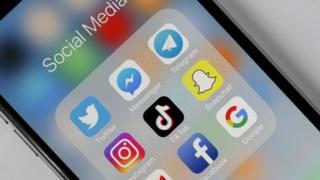 网络、媒体、社交平台、政府、监管