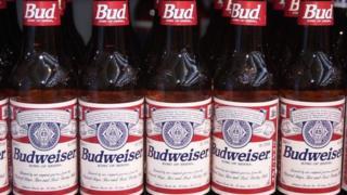 Bottles of Budweiser