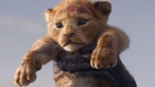 Маленький король-лев