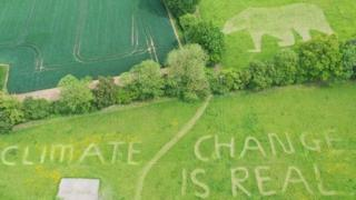"A polar bear and message saying ""Climate change is real"" mown into a lawn"