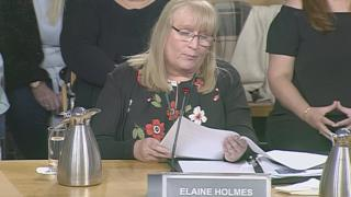 "Elaine Holmes said she was ""cynically used"" by the review group"