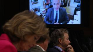 Senators in Washington, DC listen as Dr Fauci testifies remotely