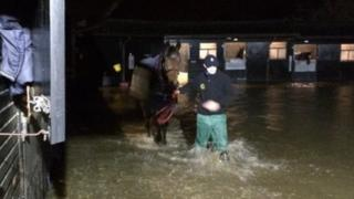 Horse at Paul Nicholls yard being led to safety from flooding