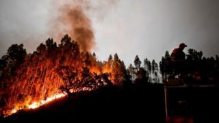Encêndio em Portugal