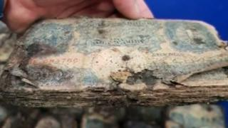 Decaying bank notes found in Brighton shop