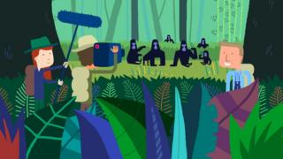 Sir David Attenborough's animated stories