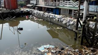 Picture of a dike in North Jakarta.