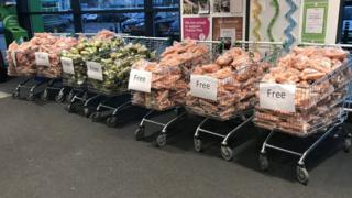 Trolleys full of vegetables