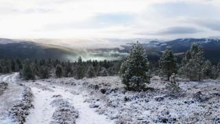 Steam rising in a snowy valley floor