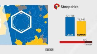 Shropshire EU referendum graphic
