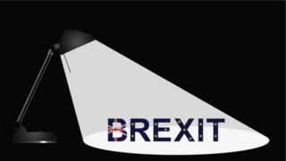 Brexit light