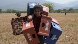 Venezuelan Dayana Pirela carries empty soda and beer crates to sell