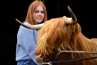 Laura Hunter from Barnhill farm, Shotts, prepares two-year-old Bo