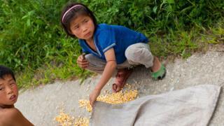 10 triệu người Bắc Hàn cần cứu đói khẩn cấp (Ảnh minh họa)