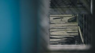 Wildlife Conservation Awareness - Damaged timber decking at Dunston Staiths