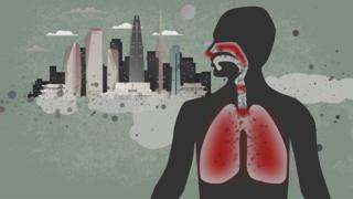 一些韩国政客将最近该国空气污染的责任推给中国,事实真的是这样吗?