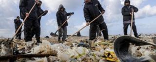 کارگران دارند ساحل شهر بندری ذوق مصبح را تمیز میکنند