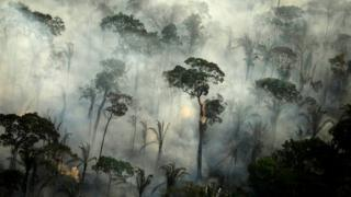 science Smoke billows from a fire in an area of the Amazon rainforest