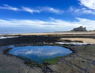 Reflections in a rockpool
