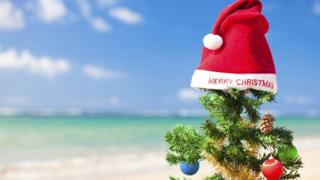 A Christmas tree pictured by the sea
