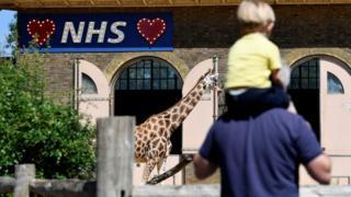 NHS sign over giraffe keep