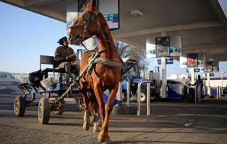Horses pulling a cart are seen at a fuel station after the owners checked tire pressure on the carts in Soweto, Johannesburg, South Africa, June 15, 2017.