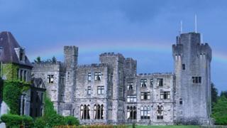 獵鷹,阿什福德城堡,愛爾蘭(圖片來源:DEA/W.BUSS/Getty)