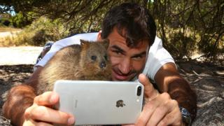 Tennis player Roger Federer takes a selfie with a quokka on Rottnest Island
