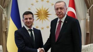 Erdoğan ve Zelensy
