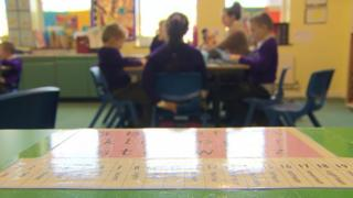 """The committee is calling for up-to-date school enrolment figures to be gathered """"as a matter of urgency"""""""