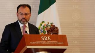 وزير خارجية المكسيك لويس فيديغاراي.