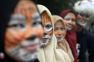 kampanye hari harimau