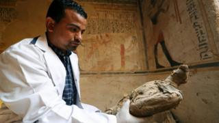 An archaeologist holding an ancient, mummified bird