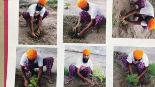 A man poses with plant saplings before applying for a gun license