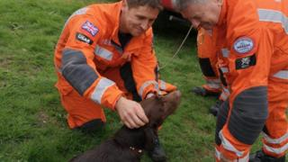 Ruby the dog with fire rescue crew